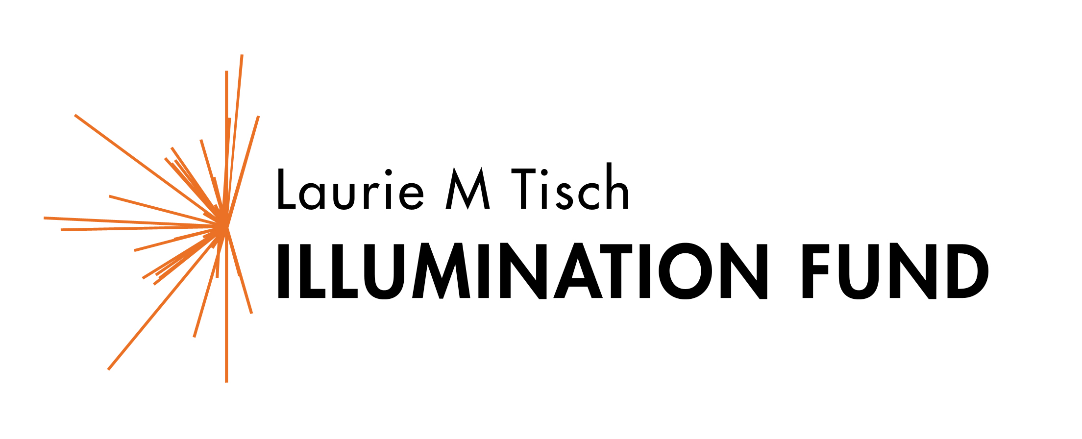 Laurie M Tisch Illumination Fund